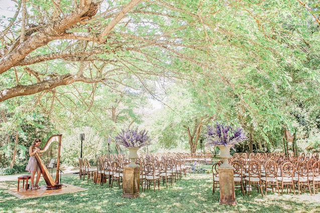 WEDDING AT DAWN RANCH IN THE RUSSIAN RIVER BY CALIFORNIA PHOTOGRAPHER CLAIRE BARRETT 29