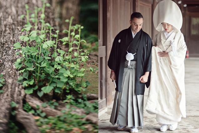 TRADITIONAL WEDDING AT MEIJI SHRINE TOKYO BY DESTINATION WEDDING PHOTOGRAPHER 18