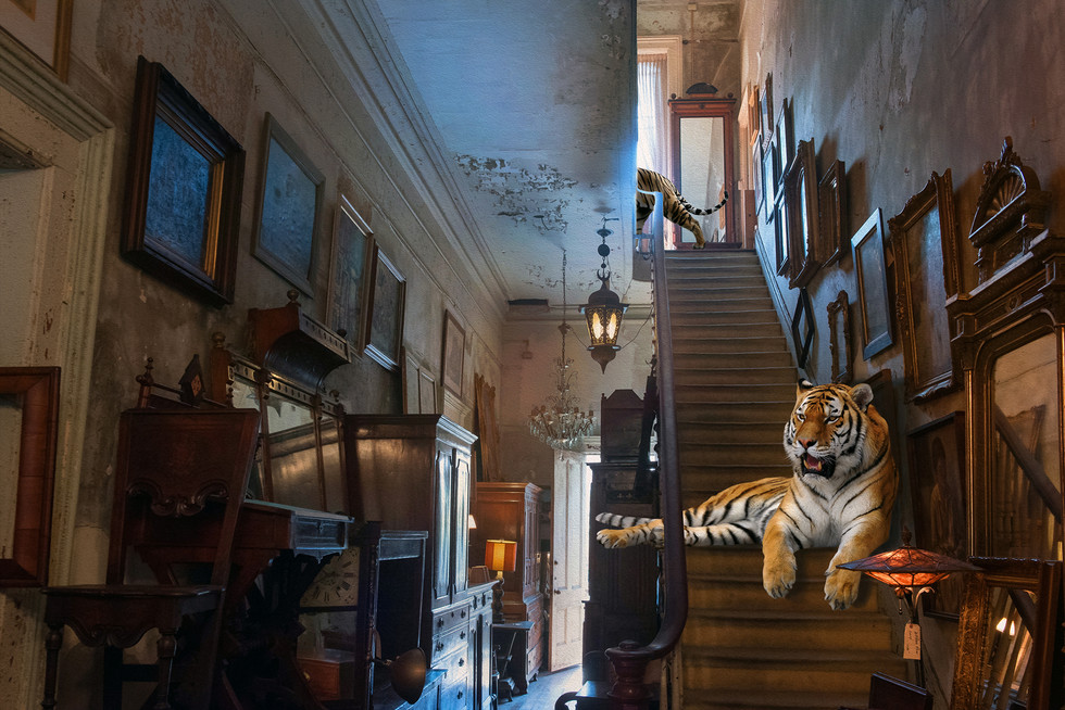 Tigris Antiquus