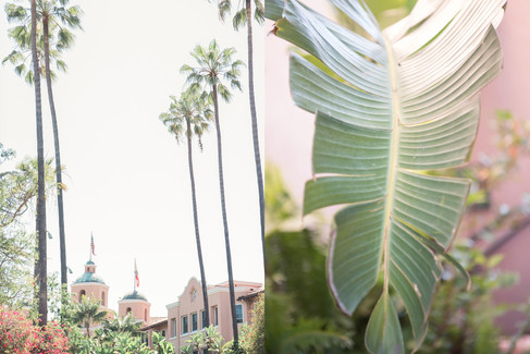 Wedding at the Beverly Hills Hotel by LA wedding photographer 2
