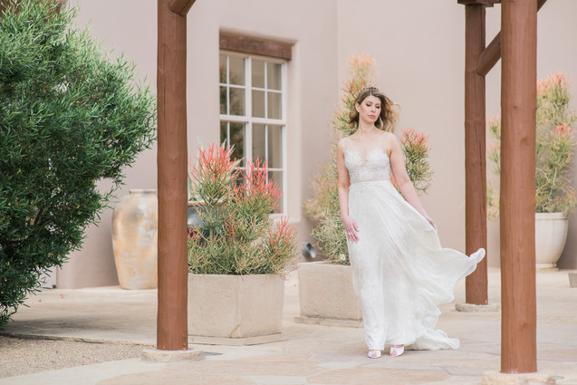 Bride in Arizona