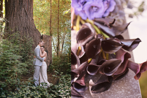 WEDDING AT DAWN RANCH IN THE RUSSIAN RIVER BY CALIFORNIA PHOTOGRAPHER CLAIRE BARRETT 39
