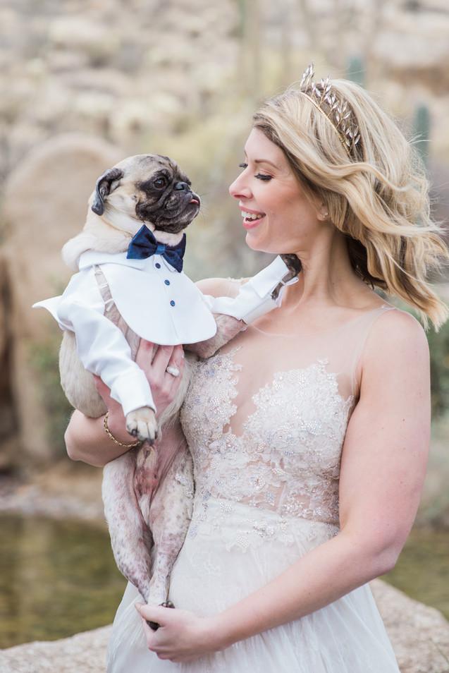 Bride with her dog at Arizona wedding