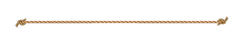 rope-png-1200_204.png