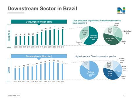 DOWNSTREAM SECTOR IN BRAZIL