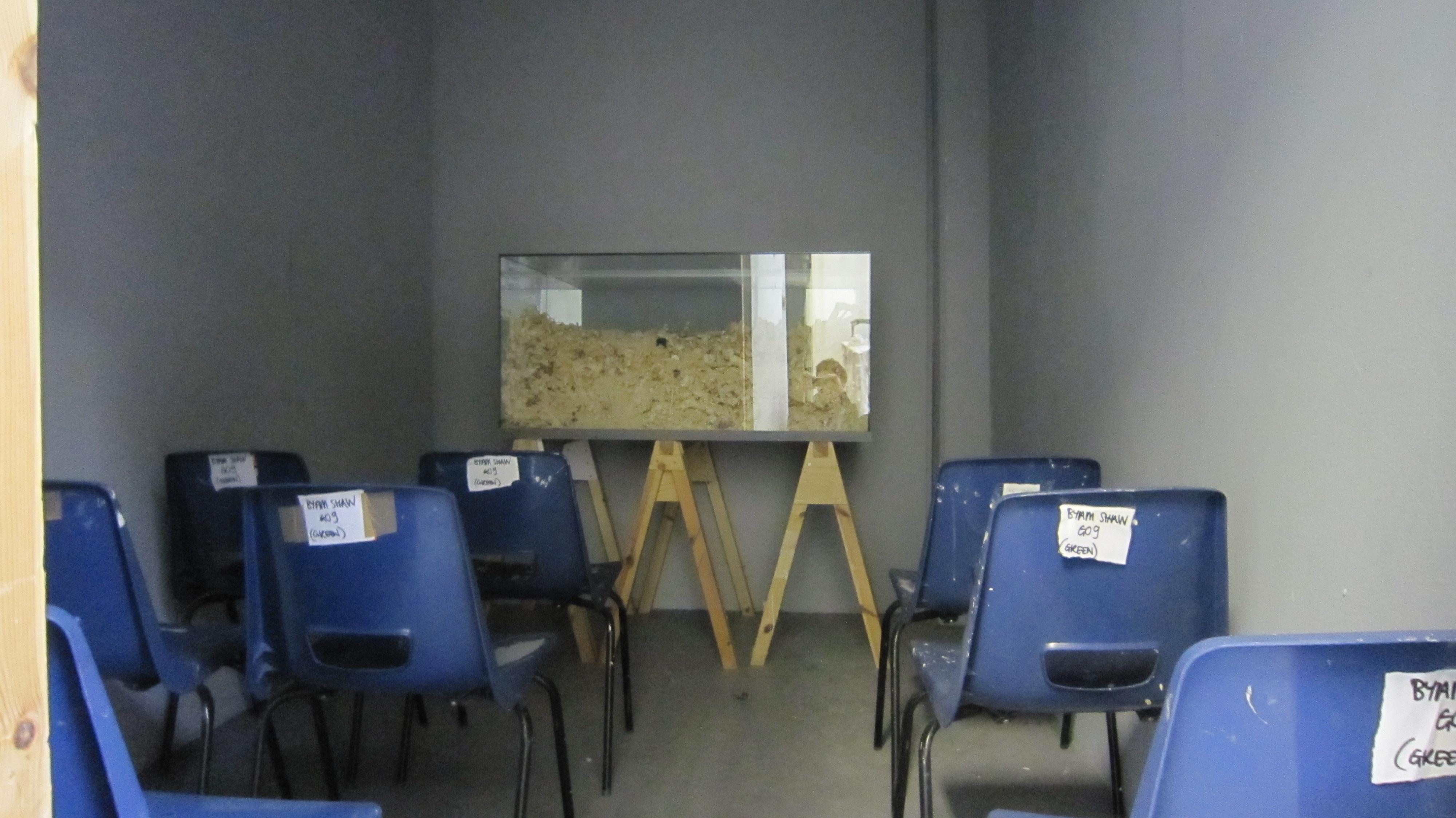 'wreck my classroom' Final Show