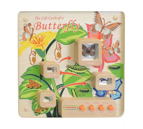 Wall Element - Light-Up Butterfly Life Cycle Stages (Masterkidz ME12883)