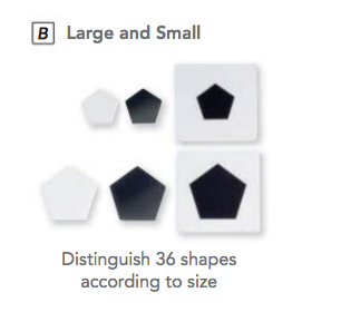 "Shape Finder ""Large and Small"" (Haba 133362)"