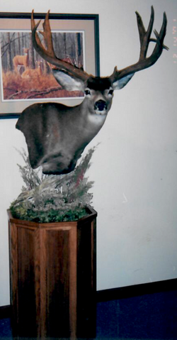 Mule deer ped fsho habitat base_Cropped
