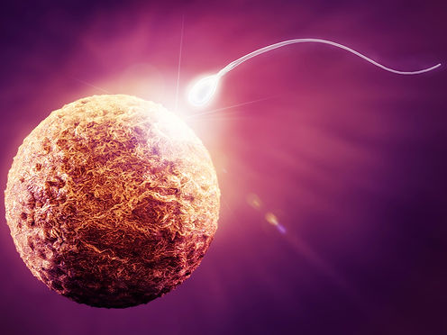 infertility.jpg