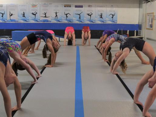 Pike Gymnastics Academy