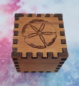 1 X 1 X 1 Sand Dollar Cube
