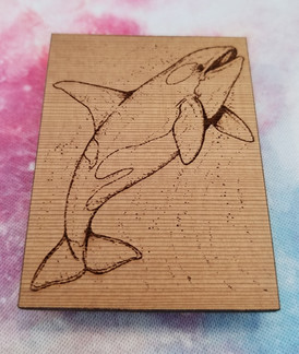 Whale - Square Magnet