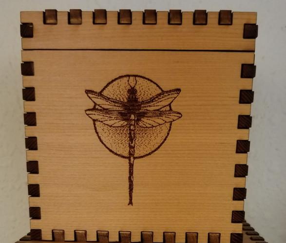 4 X 4 X 4 Dragonfly Cube