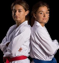 voegelin Karate