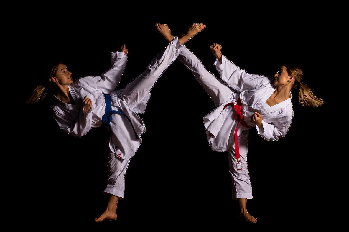 Voegelins Karate Swiss