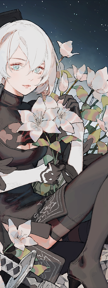 2b_small.png