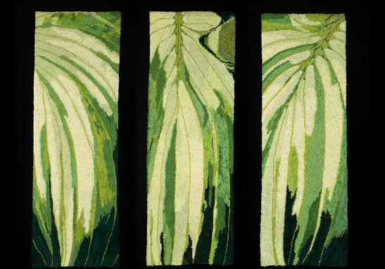 Hosta - triptych