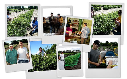 Northern Light Orchards staff and workers