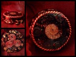 Ammonite Collage