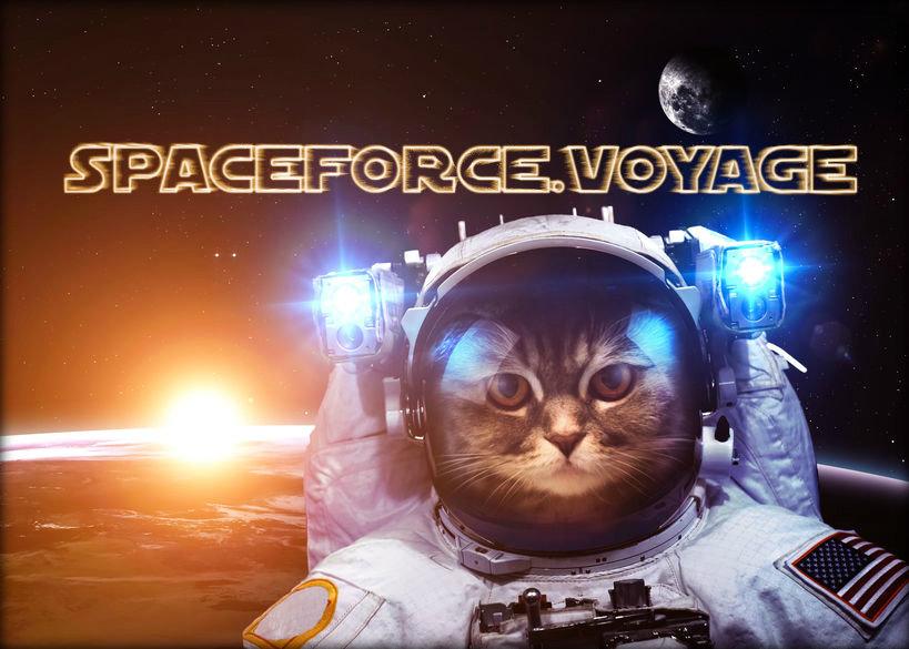 Spaceforce_voyage_promo.jpg