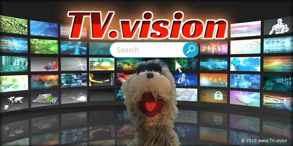 TV Vision Promo Banner.jpg