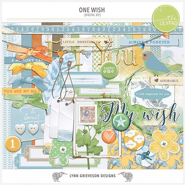 One Wish Kit