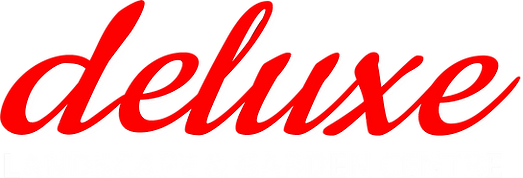 deluxe logo - red and white.png