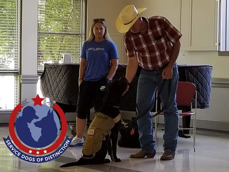 """President and Co-founder Don Gardner talks about training at """"Service Dogs of Distinction"""""""