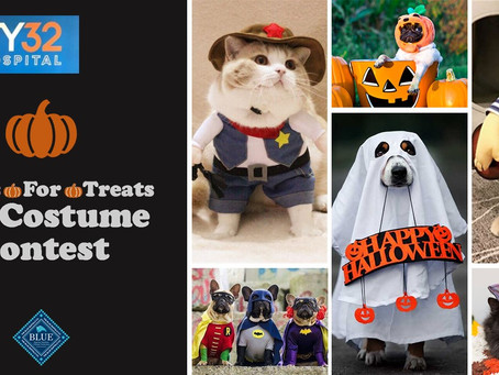 40/29 Is Holding An Online Pets Tricks for Treats contest