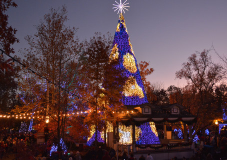 Silver Dollar City Famous Holiday Light Display Has A New Christmas Tree!