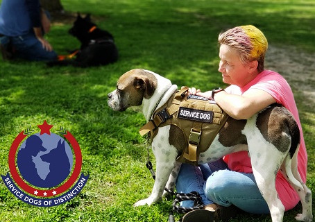 Service Dogs of Distinction Receives A Surprise Donation For Its Veterans and Their Service Dogs.