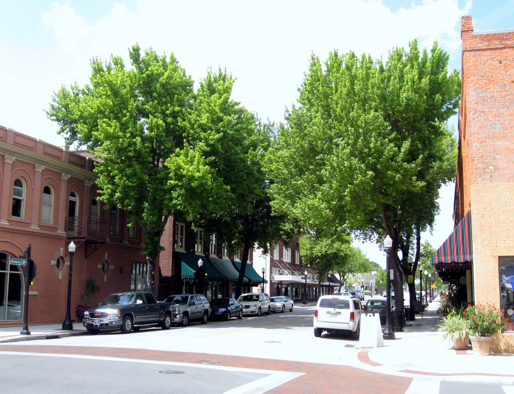 Downtown - Tree Lined Street