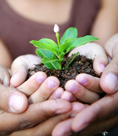 Cuidamos el planeta