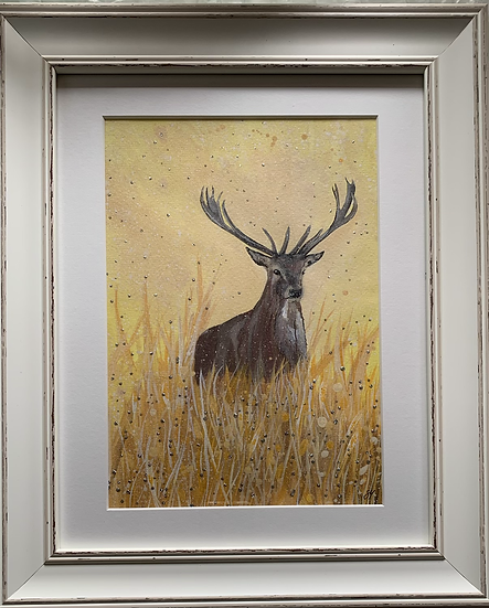 Stag ORIGINAL - signed, mounted and framed