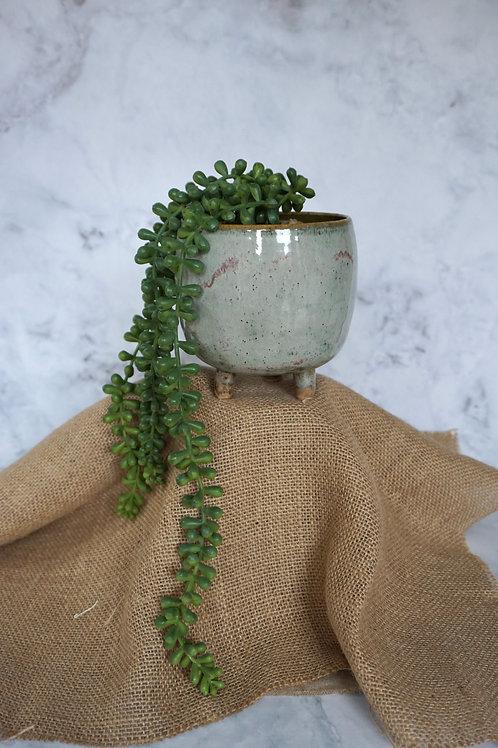 Eggshell Plant pot