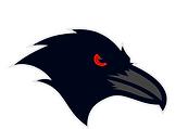 Raven on Shoulder.PNG