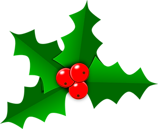 holly-2957539_1280.png