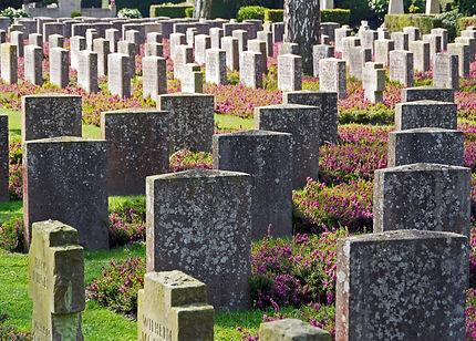 military-cemetery-3845571_1920.jpg