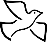 dove5.png