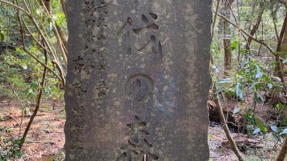 江戸時代から続く不伐の森