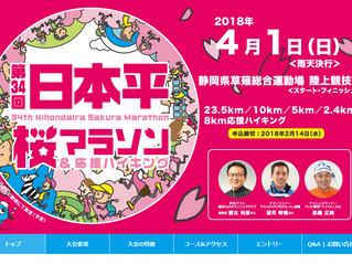 日本平桜マラソン2018