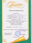 Чердонова Л-город мастеров-3 место.jpg