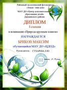 Бриков Максим, 1 место Природа.JPG