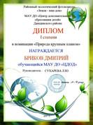 Бриков Дима, 1 место.JPG