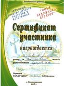 Аксенова Саша, сертификат.jpg