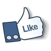 Pietro's Facebook Page Like
