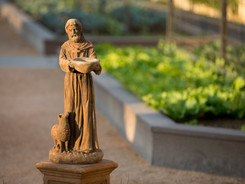 St. Francis Statue at Pietro's of Lodi