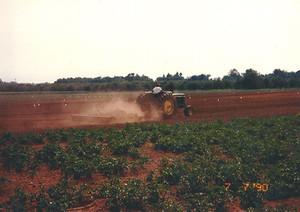 Paul Mason tilling a field