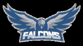 fca_falcons_baseball.png